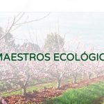 HaciendasBio, el mayor productor de fruta y verdura ecológica de España