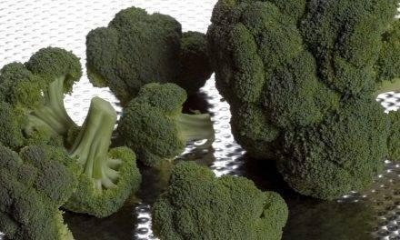 Polvo de brócoli y más