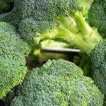 El consumo de brócoli en España crece, y continuará haciéndolo
