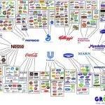 La legislación europea favorece, voluntaria o involuntariamente, a las marcas multinacionales
