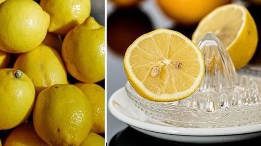 El limón…, justificadamente de moda
