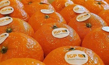 Estados Unidos recupera el interés por las clementinas valencianas