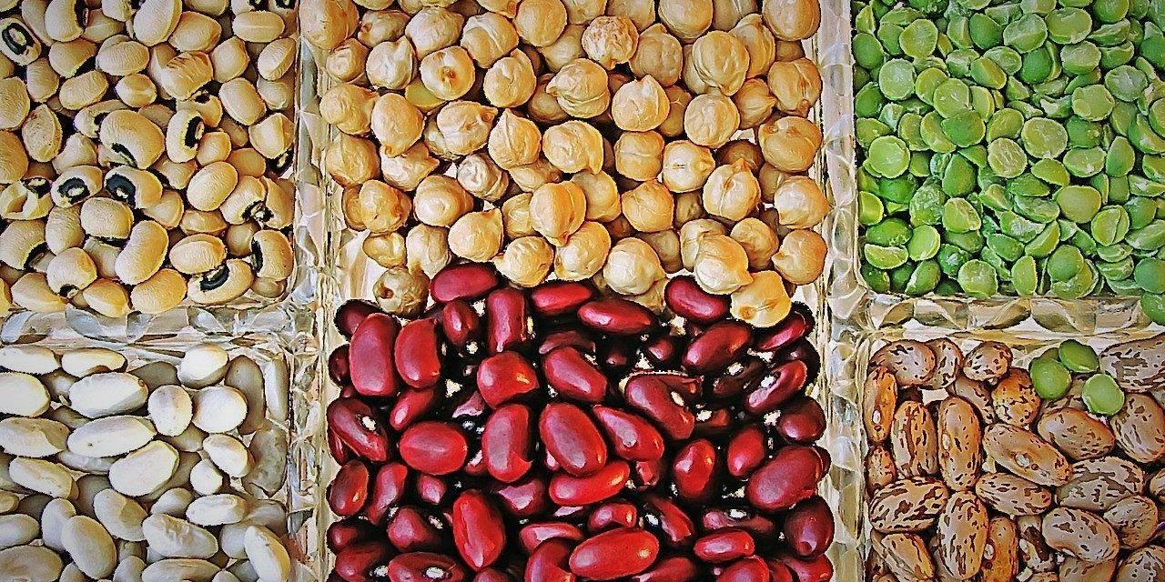 Las asequibles legumbres son proteínas y aminoácidos para una dieta saludable