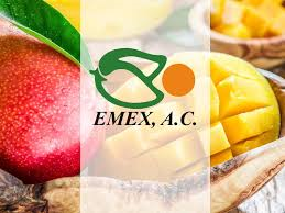 Una etiqueta de calidad para Mango de México