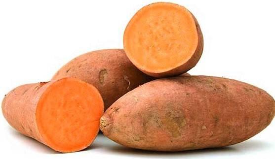 Los boniatos de carne naranja, una historia de éxito en la mejora nutricional