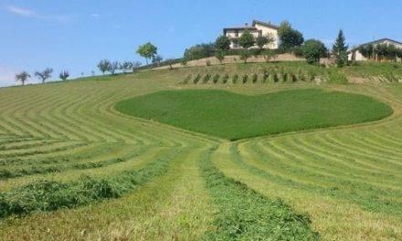 El valor del paisaje y la agroalimentación