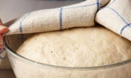Pan, con el máximo de propiedades, es el que experimenta tres tipos de fermentación