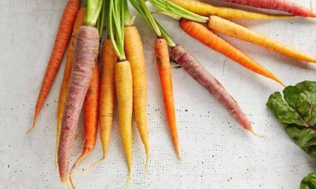 How Long Do Carrots Last?