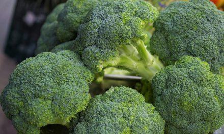 Brotes de brócoli y propiedades saludables