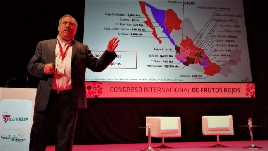 Berries de México: seguridad alimentaria e internacionalización