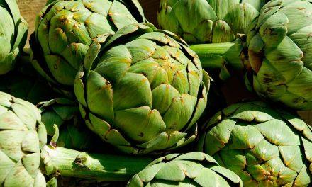 La alcachofa endulza el agua y el vino y cuida el hígado