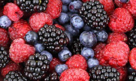Asociación mexicana de exportadores de berries organiza congreso