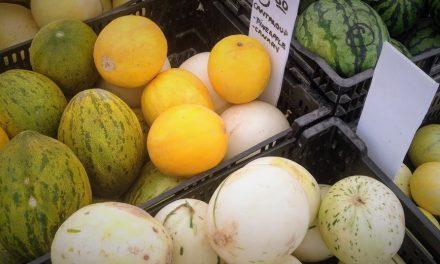 Los nuevos melones