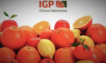 Impulsan la sostenibilidad en la citricultura valenciana