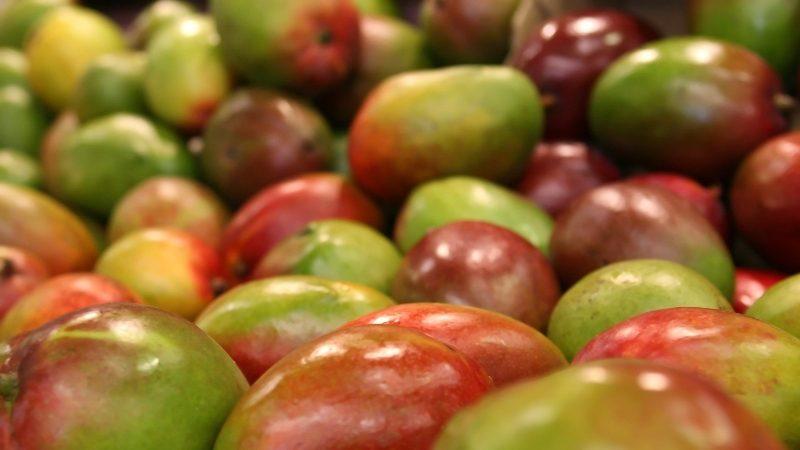 Asociación mexicana de exportadores de mangos asistirá al PMA Fresh Summit