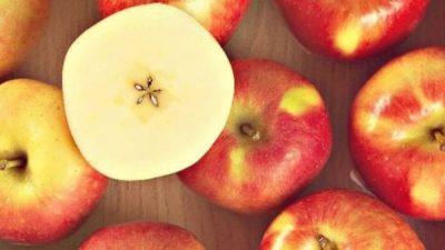 Fruit Attraction: Manzanas Val Venosta presenta en una nueva etapa