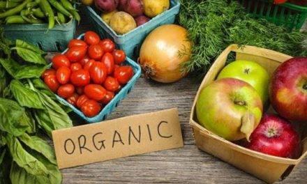 Seminario para fomentar la producción y el consumo de productos ecológicos
