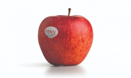 Envy, la manzana favorita de los clientes, disponible en supermercados