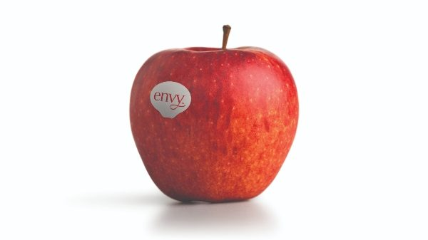 Envy, la manzana favorita de los clientes, disponible en supermercados