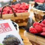 Frutas y política, un binomio necesario
