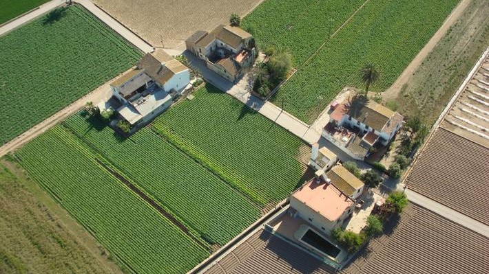 La FAO cataloga l'Horta de València como Patrimonio Agrícola Mundial