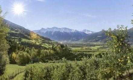 La Asociación de Fruticultores de Val Venosta estrena imagen y logo