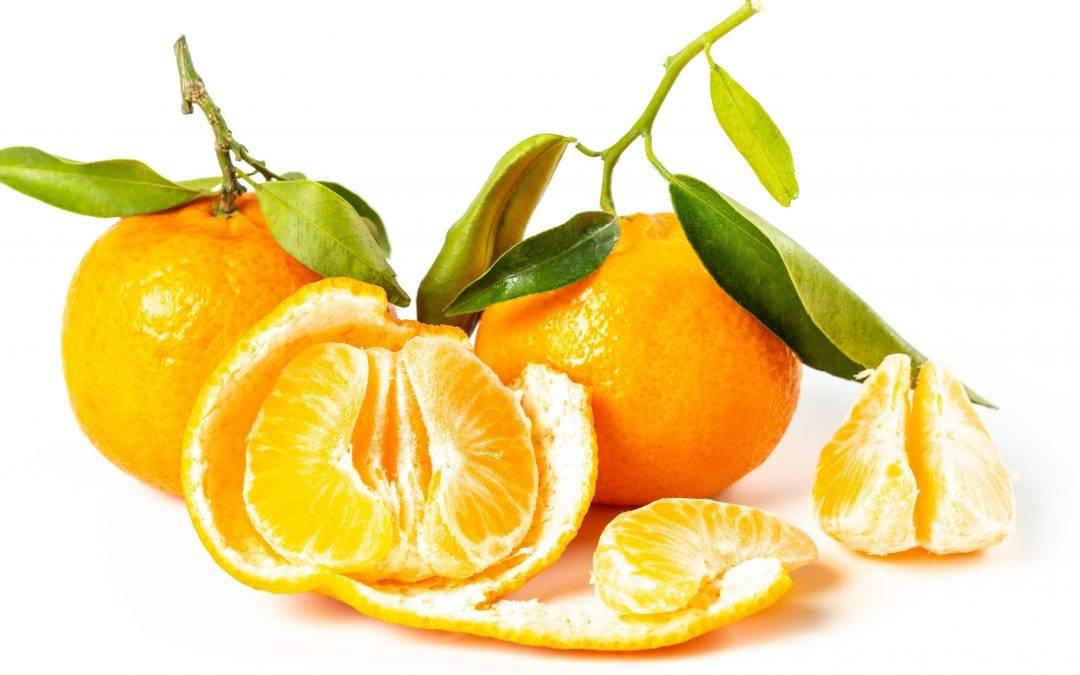 Los beneficios de la mandarina hacen aumentar su exportación