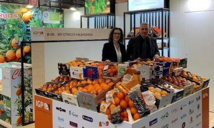 Crece el interés en la Europa tradicional por los Cítricos Valencianos