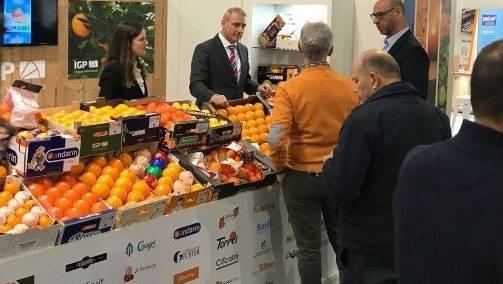 Cítricos Valencianos representa a 61 operadores registrados