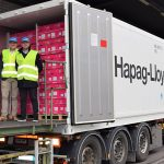 Italian Apples Reach Vietnam With the First Vog Consortium Shipment
