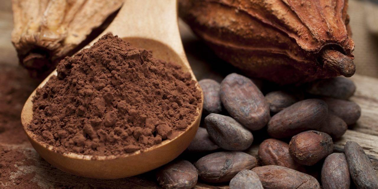 El cacao natural, un aliado saludable en tiempos de confinamiento