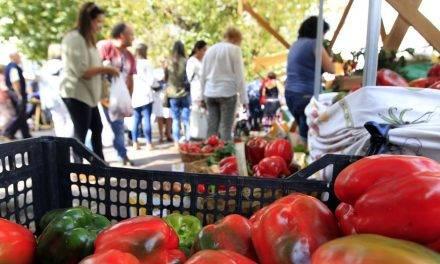 En Galicia acercan frutas y hortalizas a los consumidores con Mercaproximidade