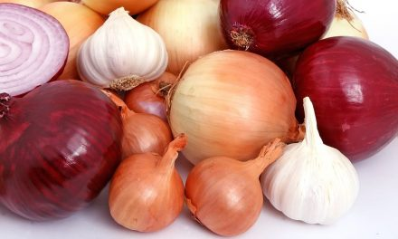 Tara, comercialización de cebollas y ajos
