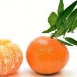 La mandarina Orri incrementa un 15 por ciento sus ventas
