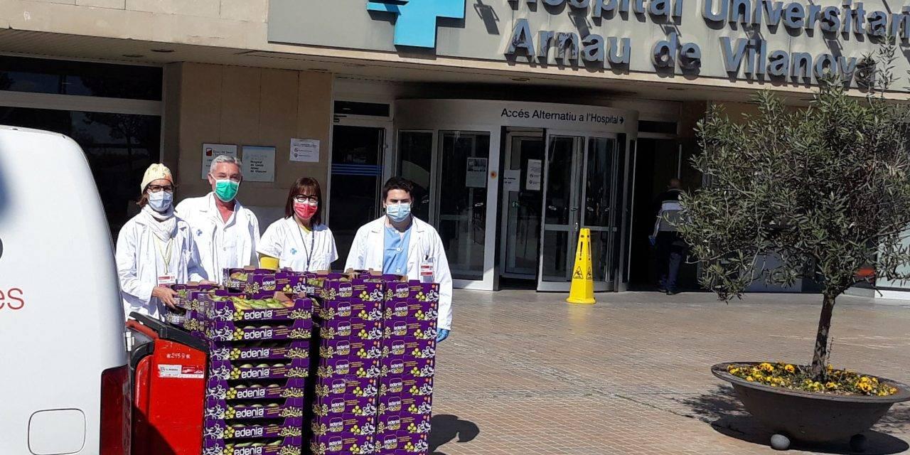 La DOP Pera de Lleida prepara fruta para el colectivo sanitario de la ciudad