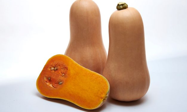 Actualidad de la calabaza Butternut en la frutería