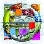 Empresas de la industria hortícola lanzan la campaña #Saludablemente