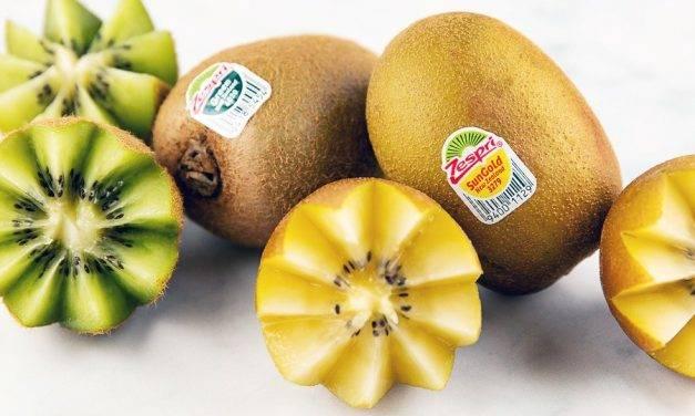 Kiwi Zespri SunGold, el kiwi dorado y dulce que salvó a una industria