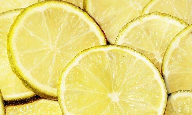 Investigadores de la UMH desarrollan un licor de limón ecológico de la Vega Baja