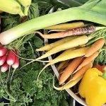 Fruta y hortalizas, el alimento seguro