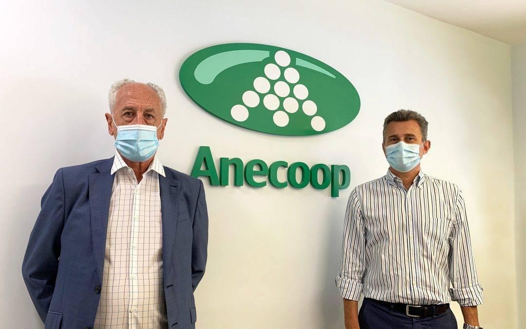 Anecoop se une al Maratón Valencia como primer patrocinador especial por su 40º aniversario