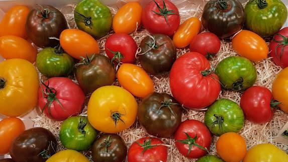 Saber Más de tomates