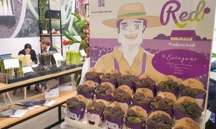 Un brócoli con nuevos atributos premiado en el Innovation Hub Awards de Fruit Attraction