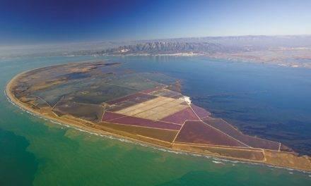 De las salinas marinas tenemos la sal más natural y ecológica