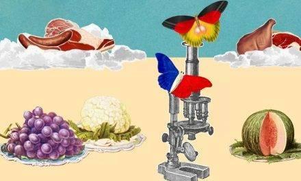 ¿Hay que dejar de comer carne por ser ecologista?
