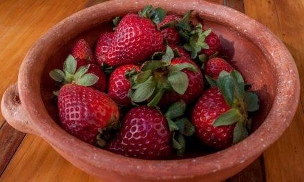 Frutillas o fresas: una fruta muy apreciada en Argentina