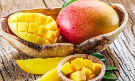 Los mangos de México reafirman su internacionalización