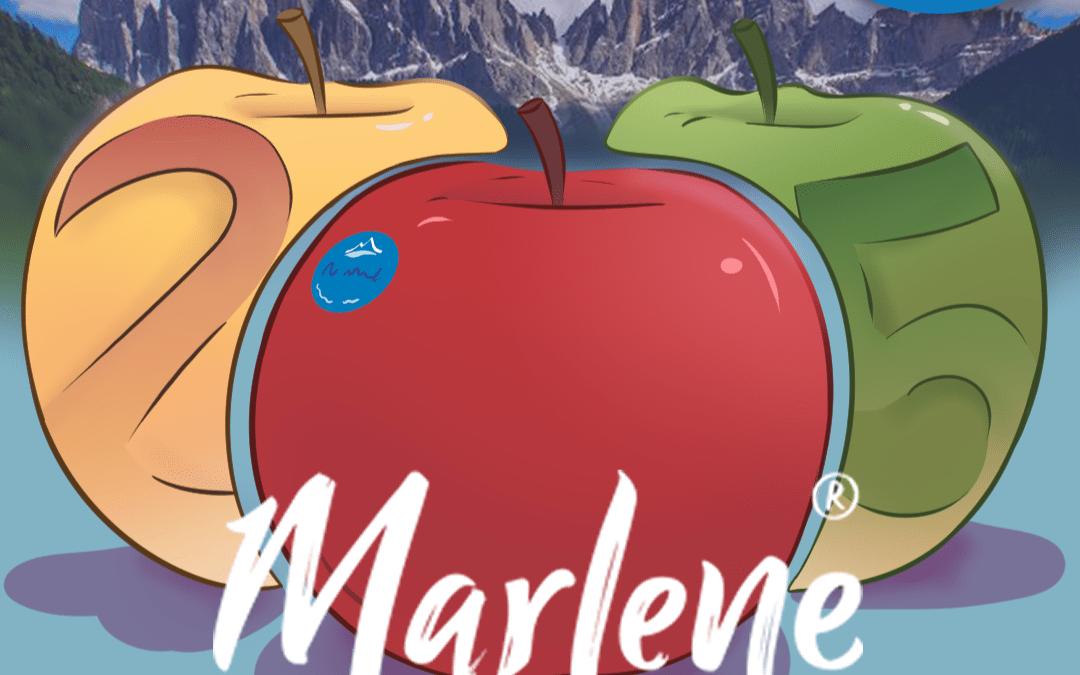 Contest Marlene, más de mil doscientas obras procedentes de España
