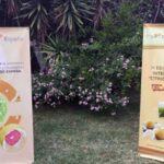 """Nuevos Embajadores Internacionales """"Cítricos de España 2021"""" en México"""