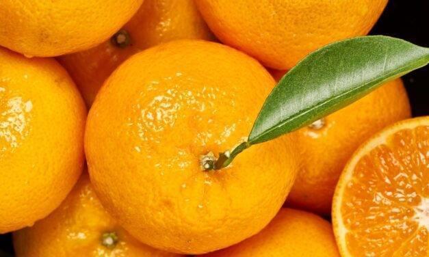 ¡A disfrutar! Orri, la mandarina premium, estará en los mercados los próximos cinco meses